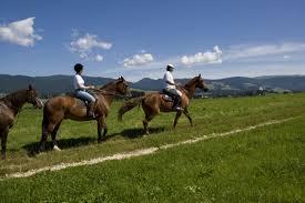 Turismo equestre in Lessinia