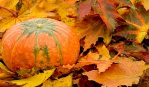 La zucca protagonista delle sagre dì'autunno del veronese